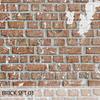 20 20 26 937 brick 3ddd 010000 4