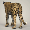 18 36 01 59 photorealistic wild leopard 04 4