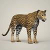 18 36 06 618 photorealistic wild leopard 06 4