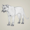 18 42 36 534 photorealistic wild panther 07 4