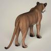 18 49 18 524 photorealistic wild cougar 05 4