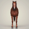 10 32 51 17 photorealistic brown horse 03 4