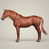 10 32 53 236 photorealistic brown horse 04 4