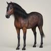 10 35 13 32 photorealistic horse 01 4