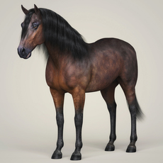 Photorealistic Horse 3D Model