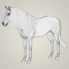 10 35 25 62 photorealistic horse 08 4