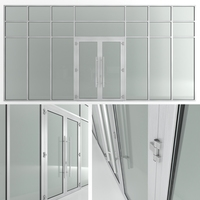 Glass fire doors and partitions Nayada 3D Model