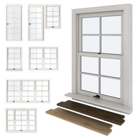 American type plastic Windows 3D Model