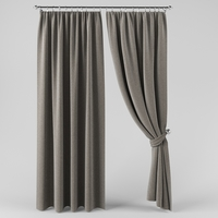 A curtain with a curtain 3D Model