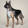 07 07 41 527 realistic german shepherd dog 01 4