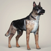 07 07 43 802 realistic german shepherd dog 06 4