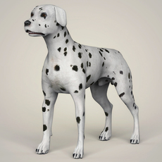 Realistic Dalmation Dog 3D Model