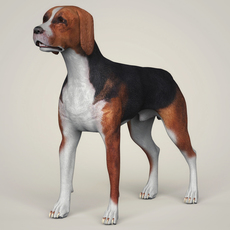 Realistic Hound Black Dog 3D Model