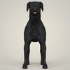 07 49 34 436 realistic black labrador dog 02 4