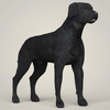 07 49 34 499 realistic black labrador dog 06 4