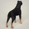 08 59 51 336 realistic rottweiler dog 05 4