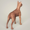 09 03 56 275 realistic miniature pinscher dog 05 4