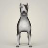 09 08 40 148 realistic bull terrier dog 02 4