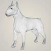 09 08 41 59 realistic bull terrier dog 07 4