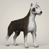 09 08 42 350 realistic bull terrier dog 06 4