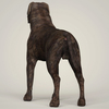 10 57 02 791 realistic mastiff dog 04 4