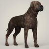 10 57 03 168 realistic mastiff dog 06 4