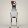 11 31 34 106 realistic parson russell terrier dog 02 4
