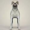 11 47 24 184 realistic labrador dog 02 4