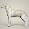 11 47 24 595 realistic labrador dog 03 4