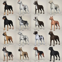 Realistic 3D Dog Collection 3D Model