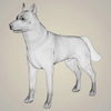 08 19 26 986 realistic alaskan malamute dog 07 4