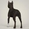08 19 27 254 realistic american staffordshire dog 04 4