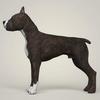 08 19 27 416 realistic american staffordshire dog 03 4