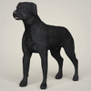 08 19 28 383 realistic black labrador dog 01 4