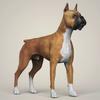 08 19 30 86 realistic boxer dog 06 4