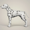 08 19 32 123 realistic dalmation dog 03 4