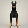 08 19 33 74 realistic doberman dog 02 4