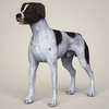 08 19 35 23 realistic german shorthaired dog 01 4