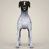 08 19 35 282 realistic german shorthaired dog 02 4