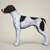 08 19 35 718 realistic german shorthaired dog 03 4