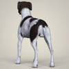 08 19 35 979 realistic german shorthaired dog 04 4