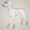 08 19 36 126 realistic german shorthaired dog 07 4