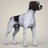 08 19 36 29 realistic german shorthaired dog 06 4