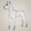 08 19 37 161 realistic great dane dog 07 4