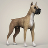 08 19 37 58 realistic great dane dog 06 4