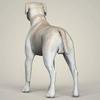 08 19 38 193 realistic labrador dog 04 4
