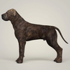 08 19 39 121 realistic mastiff dog 03 4