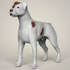 08 19 40 861 realistic parson russell terrier dog 01 4