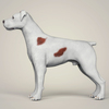 08 19 41 674 realistic parson russell terrier dog 03 4