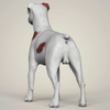 08 19 41 711 realistic parson russell terrier dog 04 4